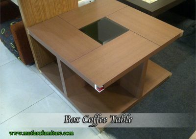 coffee table (28)