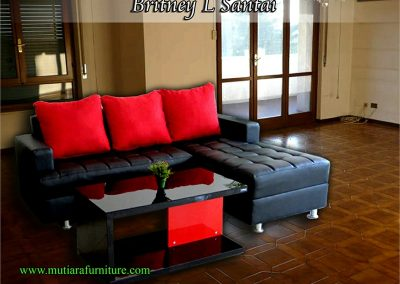sofa (116)